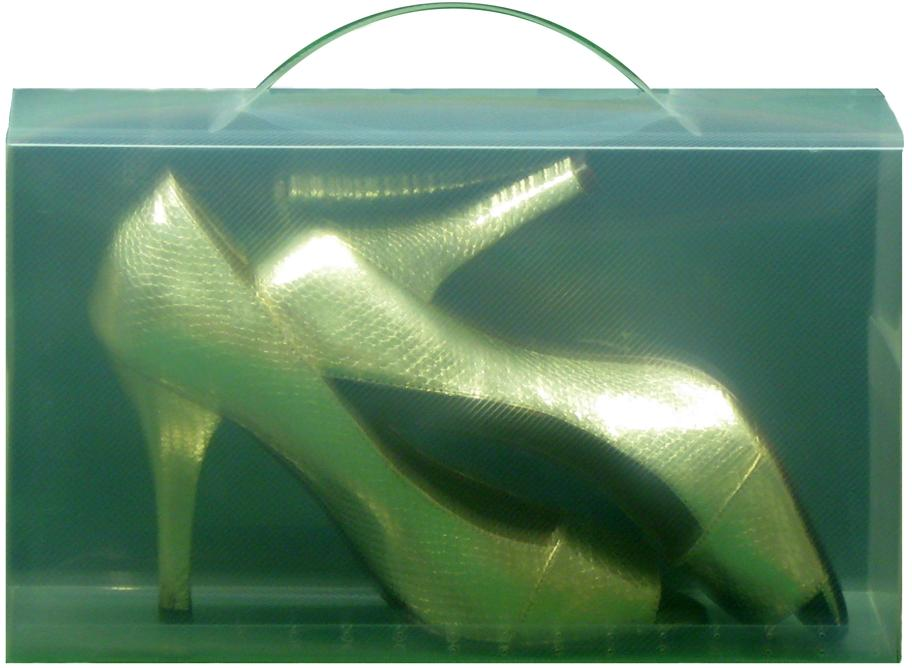 Clear View Shoe Boxes With Carry Handle PACK OF 5 FOR ONLY ?